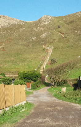 brean-down-steps