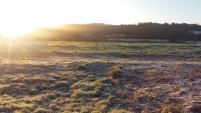 frosty-field-4-dec-2016
