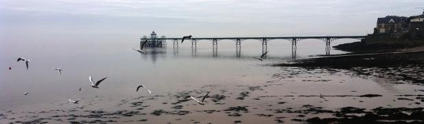 pier-with-birds