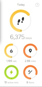 seafront-fitbit-total